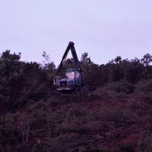 Skovningsmaskine