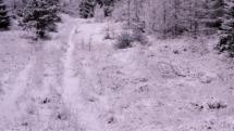 Snevejr december 2017